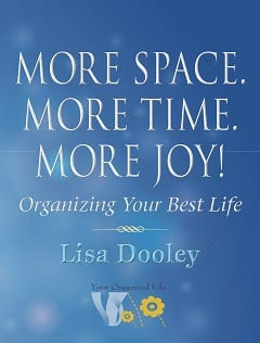 Read more about the game changer book More Space. More Time. More Joy!