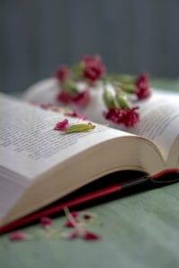 open book with flower petals
